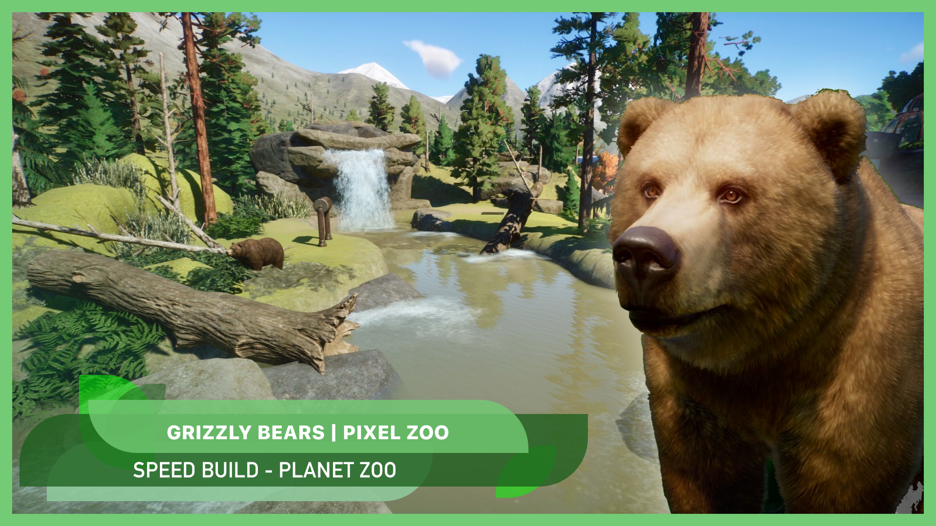 New video: Grizzly bears 🐻🍁