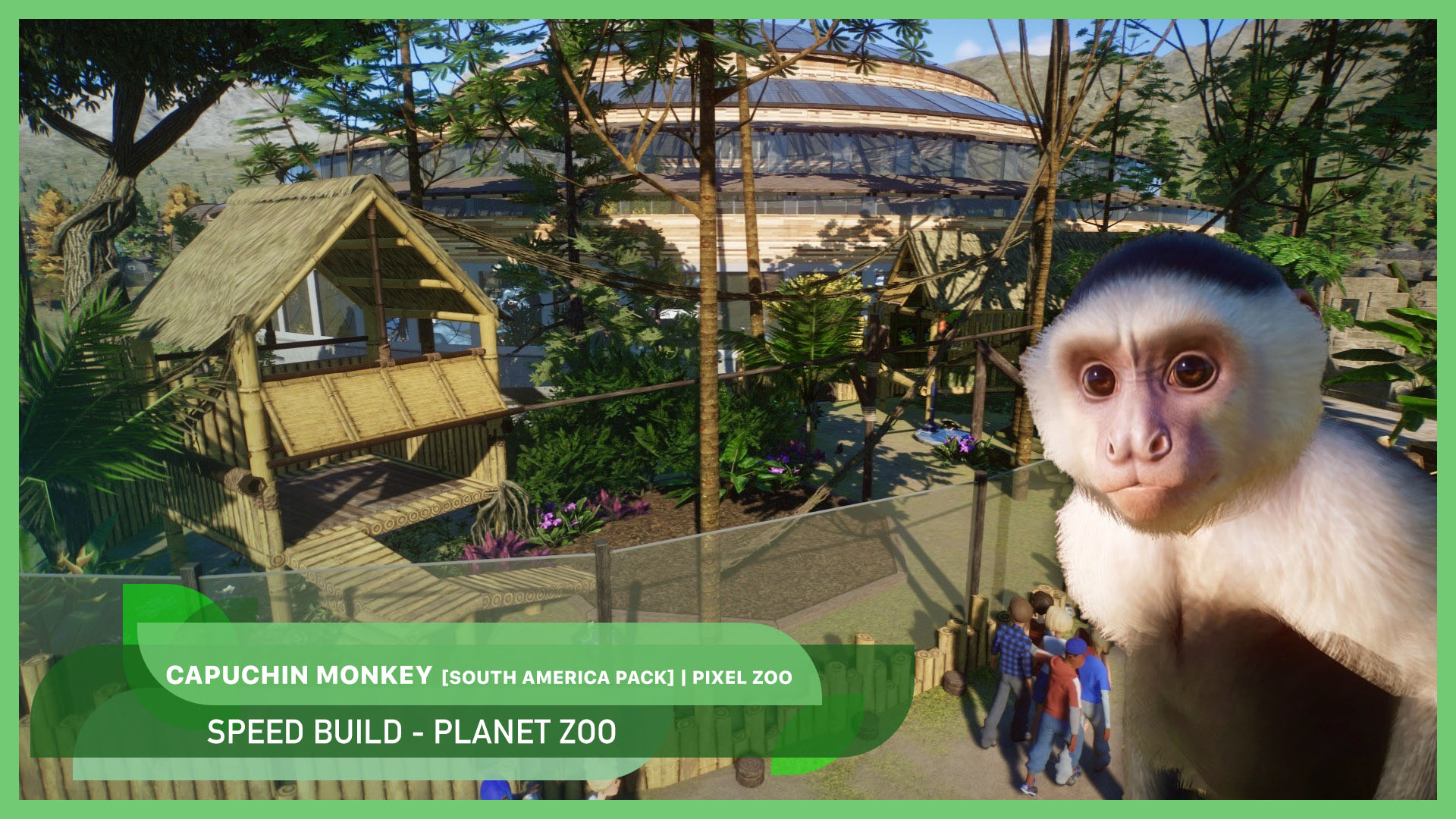New video: Capuchin Monkey 🐵🌺 | South America Pack